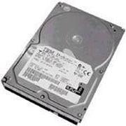 IBM 硬盘146GB/10K/U320/80针