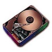 太阳 硬盘36.4GB/10K/SCSI(X5242A)