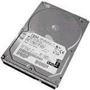 IBM 硬盘146GB/10K/U320/80针(40K1024)
