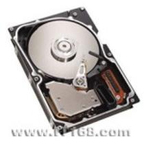 "IBM 硬盘146.8GB/15K/SAS/3.5""(40K1044)产品图片主图"