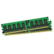 IBM 内存1GB/DDR2/PC-3200/E(39M5818)产品图片主图