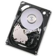 IBM 硬盘35.16GB/10K/小型机(4319)