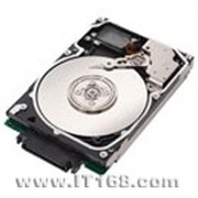希捷 300GB/Cheetah 15K.6/SAS(ST3300656SS)