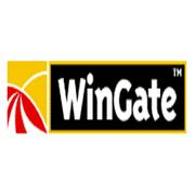 WinGate 6.x 6用户(企业版)