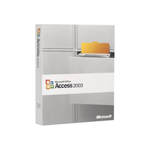微软 Access 2003(中文标准版)产品图片主图