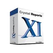 BusinessObject Crystal Reports XI(开发版)
