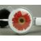 飞利浦 PHILIPS SHM7110 头戴式(白色)产品图片4