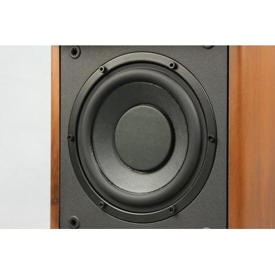 惠威 M50W 产品图片3