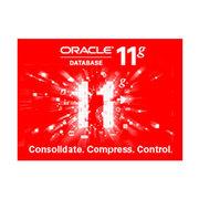 甲骨文 Oracle 11g 企业版