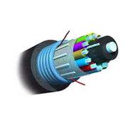 安普 室外6芯单模铠装松管型光缆(9/125)/1664163-5