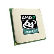 AMD 十二核皓龙 6176 SE
