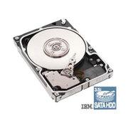 IBM 300G/15000转/SAS/热插拔(43W2234)