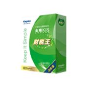金蝶 KIS V8.2财税王迷你版