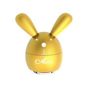 艾丁 兔子
