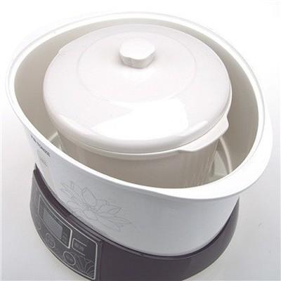 天际 GSD-32B 3.2升 隔水电炖盅产品图片4