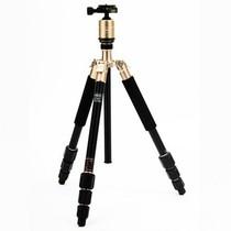 富图宝 C-4i+(G) 相机专业三脚架 金色 便携可翻折三脚架产品图片主图