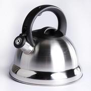 其他 新品 优质便携式不锈钢鸣音壶开水壶 3L 大容量 不锈钢1