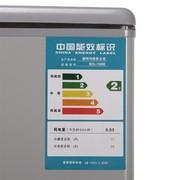 澳柯玛 BCD-116NE 116升 双开门冰箱