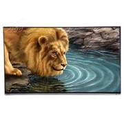 东芝 55L5350C 55英寸窄边3D网络LED电视(黑色)