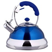 仁品 RENPIN不锈钢烧水壶 鸣音烧水壶响壶 燃气灶电磁炉可用D031 RP-D031蓝色4L