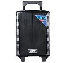 先科 户外移动电瓶拉杆音箱ST-1201  8   低音 广场 舞台 户外移动 音箱产品图片主图