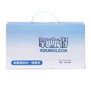 氧立得 制氧剂 A/B剂 100g*20包/3g*20包 制氧器耗材 家用老人孕妇