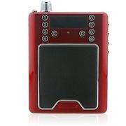 麦格菲斯 E260 MP3+FM收音 晨练户外登山 便捷插卡 数字点歌 无线麦克+大功率扩音音箱