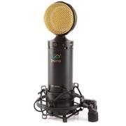 舒音 MK-6000 专业大振膜电容麦 网络K歌录音专用 音质出众 主持麦克风话筒 黑金色