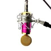 双诺 Z09专业电容有线麦克风 网络K歌 电脑/扩音器话筒  粉色(配声卡 三角支架 咪套 6.5mm转接头)