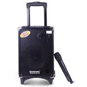 特美声 Q8 单8寸大功率|户外音响|广场舞音响|便携式|移动音箱|电瓶音箱 黑色