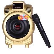特美声 Q6 单6.5寸大功率|电瓶音箱|便携式|户外|移动|充电插卡|广场街舞音响|地摊|教学 金色