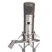艾肯 艾肯(iCON) M1 大振膜 电容麦克风 K歌 主持 录音棚专用 银色
