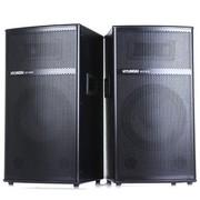 现代 DB-10M2 有源专业音箱舞台监听音响/落地式对箱/单10寸/大功率/USB(黑色)