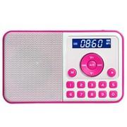 熊猫 DS-172 数码音响播放器 迷你插卡小音箱FM收音机(红色)