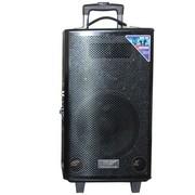 先科 1602D 10寸户外便携移动音响 大功率广场舞拉杆音箱 舞台音响 会议