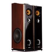现代 HY-318-68 有源音箱 晨练/家庭影院/卡拉OK/家用式对箱/插卡/高低音调节功能 (棕色)
