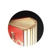 风彩 国色天香  LED创意文化书灯  可定制化书灯
