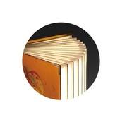 风彩 金玉满堂  LED创意文化书灯  可定制化书灯