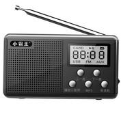 小霸王 便携式迷你插卡音箱PL-730 老人收音机听戏机晨练播放器 黑色标配+16G空卡