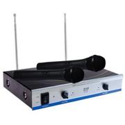 麦乐迪(MELODY) M-668 专业无线麦克风 手持式无线话筒 会议 卡拉OK 家用 KTV 舞台音响 音箱麦克 一拖二