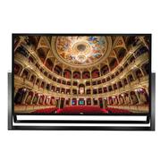 TCL L110H9500A-UD 110英寸智能超高清4K电视超高清窄边大屏(黑色)