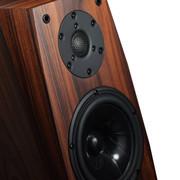 CAV FL-30A书架式音箱家庭影院HI-FI高保真音乐世界名品发烧级音响