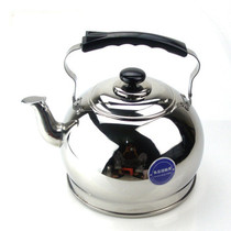 苏泊尔 水壶supor 精致琴音不锈钢烧水壶 煤气 4L-SS40P1产品图片主图
