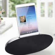 etiger 250ET 苹果音箱iphone4s音响ipod/ipad充电底座多媒体音箱 黑色
