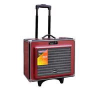 先科 109八寸喇叭 移动拉杆电瓶户外音箱 大功率插卡广场舞音响 货到付款两色 红色