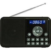 熊猫 DS-172 数码音响MP3播放器 便携式迷你usb播放机插卡小音箱FM收音机数字点歌录音机(黑色)