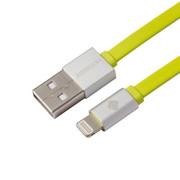 机乐堂(JOYROOM) Lighting数据线 适用于苹果iPhone5s/iPad air/mini 活力版 - 苹果绿
