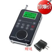德劲 新品DE1131数字调谐MP3录音复读插卡触摸滑动式全波段FM收音机 标配+插座转换器