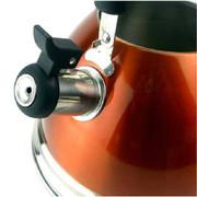 苏泊尔 水壶supor 炫彩304自动鸣笛加厚不锈钢烧水壶 煤气 电磁炉通用 SS40R1