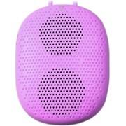 德仕 石头DS-1196 蓝牙语音音响,可插卡 可穿戴 淡紫色